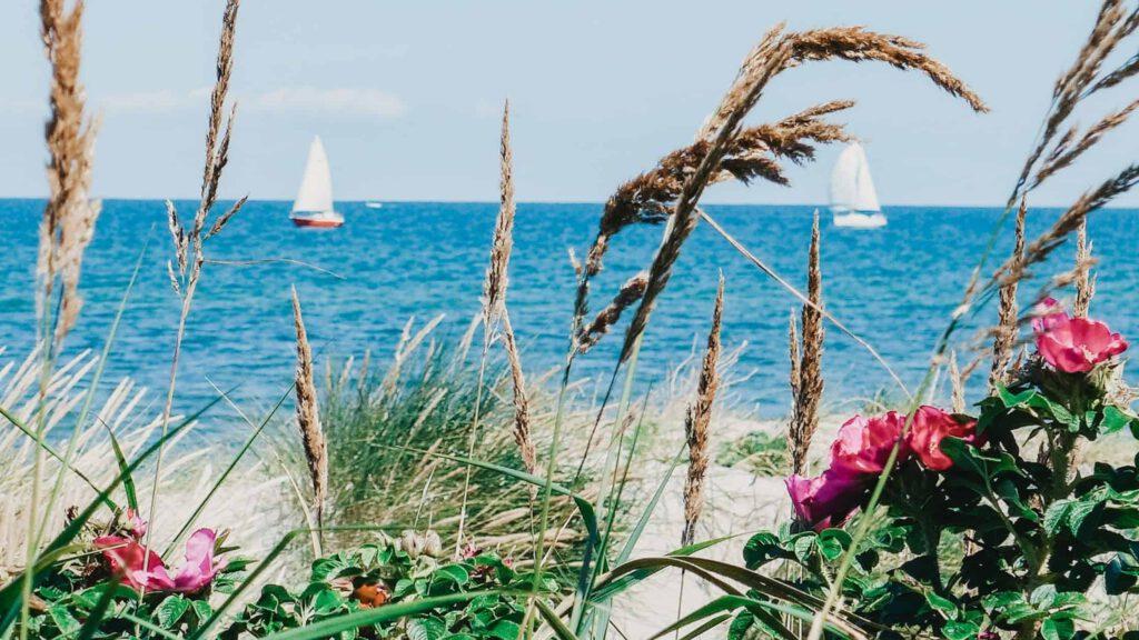 Blogbanner 14 Gewohnheiten für mehr Lebensfreude